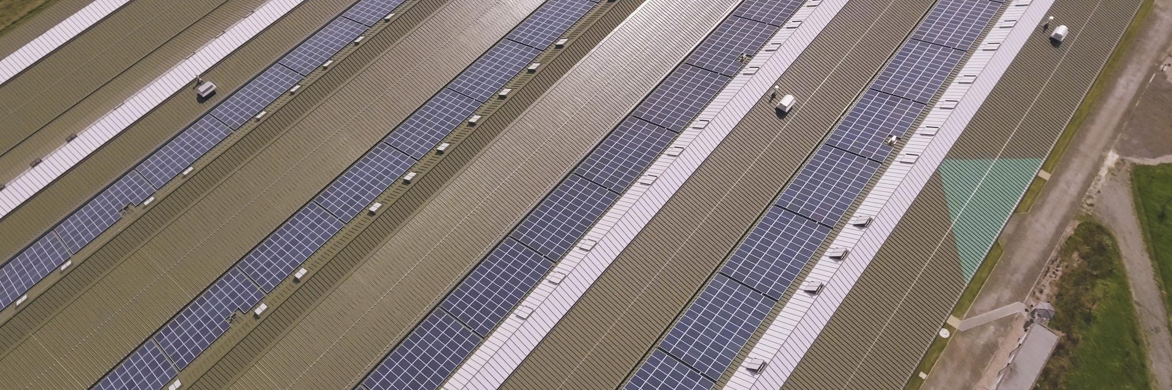 Dachverkleidung Hoffman Firmengruppe - Partner für Dach, Fassade, Haustechnik, Sanierung